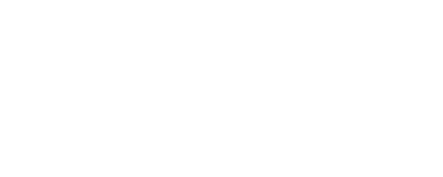 Logo Light Moneky